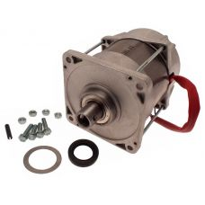 Электродвигатель (мотор) 230В FERNI F1000 CAME 119RID087