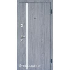 Двери Steelguard AV-1 Grey