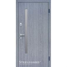 Двери Steelguard AV-1 Grey Glass