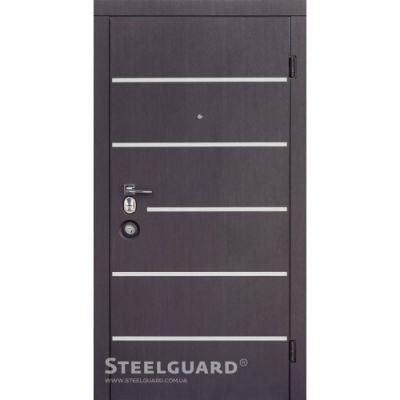 Двери Steelguard AV-5 - Фото 1