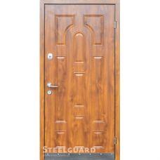 Двери Steelguard Модель №9
