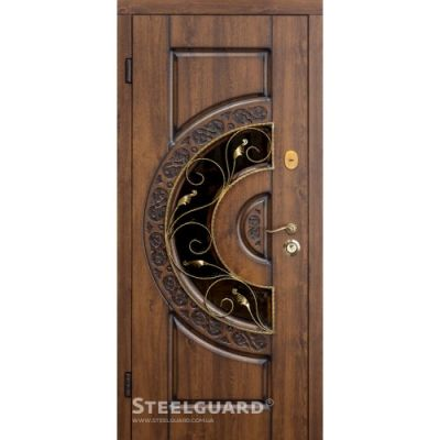 Двери Steelguard Optima glass - Фото 1