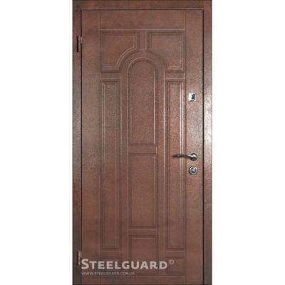 Двери Steelguard PKM 149 DK - Фото 1