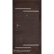 Двери Steelguard Rizor