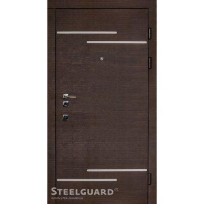 Двери Steelguard Rizor - Фото 1