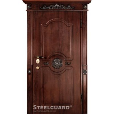 Двери Steelguard SG-14 - Фото 1