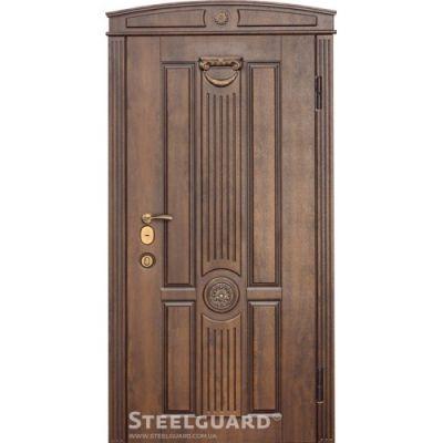 Двери Steelguard SG-15 - Фото 1