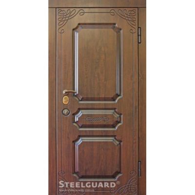 Двери Steelguard TermoScreen new - Фото 1