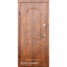 Двери Steelguard Volto